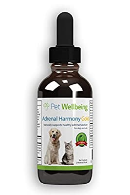 Pet Wellbeing - Adrenal Harmony Gold For Dogs- Natural Support for Adrenal Dysfunction and Cushing's - 2oz (59ml) by Pet Wellbeing