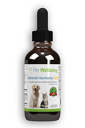Pet Wellbeing - Adrenal Harmony Gold For Dogs- Natural Support for Adrenal Dysfunction and Cushing's - 2 Ounce ( 59 Milliliter)