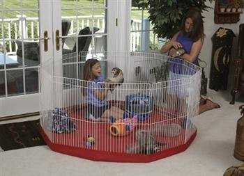 Marshall Pet Products Deluxe Small Play Pen (11 ()