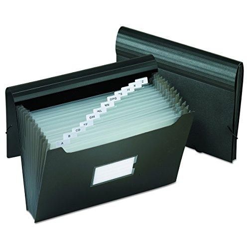 Pendaflex PFX82013 Poly Jumbo Expanding File with Elastic Cord, 13 Tabbed Pockets, Letter, (Jumbo 13 Pocket)