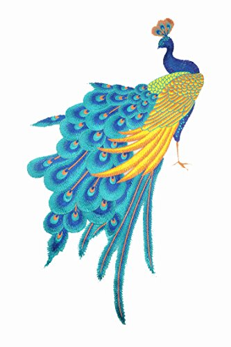 tch Multicolors Peacock Lace Motif Applique Sew on Sticker Patches Sewing Accessories (Peacock Embroidered Jean)