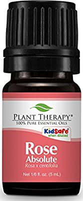 Plant Therapy Rose Absolute Essential Oil. 100% Pure, Undiluted, Therapeutic Grade. 5 mL (1/6 Ounce). from Plant Therapy Inc