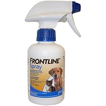 Frontline Treatment