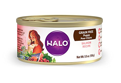 Halo Holistic Wet Dog Food for Puppies, Salmon Recipe, 5.5 OZ Canned Puppy Food, 12 Cans
