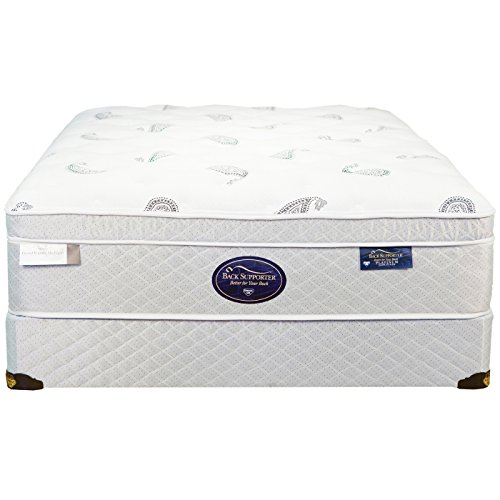Spring Air Twin Back Supporter Platinum Jade Euro Top Mattress