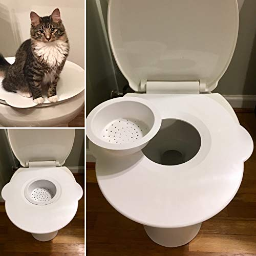 Kitty's Loo - The Best Cat Toilet Seat - Cat Toilet Training - Toilet Litter Training Kwitter