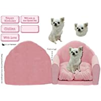 Un Chihuahua en color rosa silla Liz Harrison