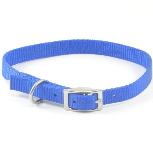 C Nyl Collar 3 8 X10  Blue