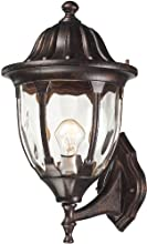 Elk 45001/1 9 by 16-Inch Glendale 1-Light Outdoor Wall Sconce with Water Glass Shade, Regal Bronze Finish