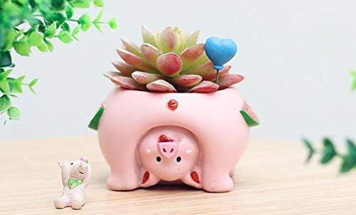 Cute Cartoon Animal Pig Shaped Succulent Cactus Flower Plant Pots for Home Garden Office Desktop Decoration Plant Not Included