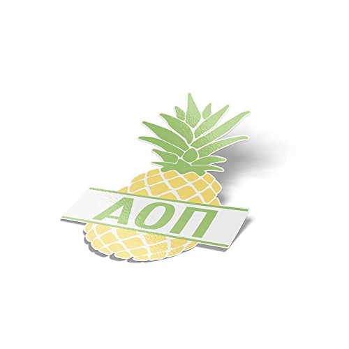 Desert Cactus Alpha Omicron Pi Pineapple Letter Sticker 4 Inch Tall Sorority Decal Greek for Window Laptop Computer Car AOII