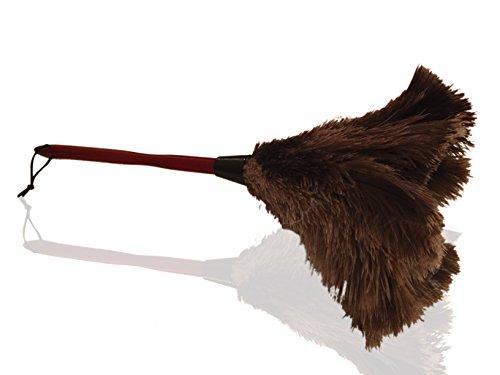 Hochwertiger 50cm 20'' Premium-Staubwedel aus echten Straußenfedern - Zieht Staubpartikel an- Dicke weiche Federn an einem haltbaren ergonomischen Holzgriff - einfaches effizientes Reinigen und Staubwischen