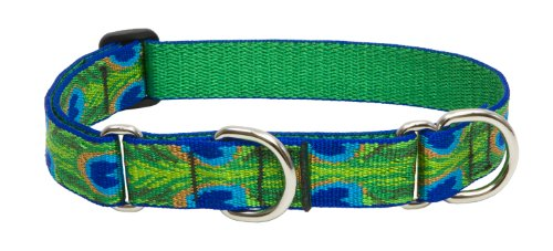 "LupinePet Originals 1"" Tail Feathers 19-27"" Martingale Collar for Large Dogs"