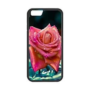 iPhone 6 Plus 5.5 Inch Cell Phone Case Black China Red Rose Macro Rmujs