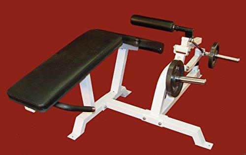 TDS Fitness Biometric Leg Curl Machine by NYB