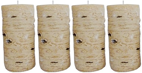Biedermann & Sons All Wax Birch Style Candle, 3 by 6-Inch, Box of 4
