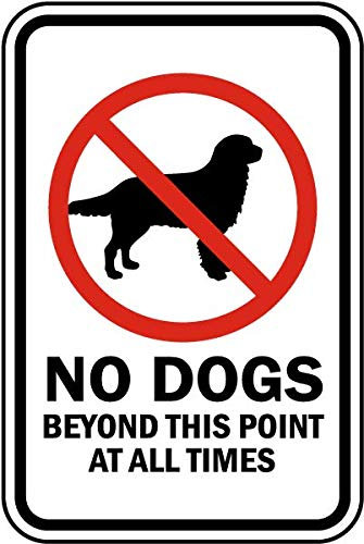 Traffic Signs - No Dogs Beyond This Point Sign 12 x 18 Magnet Sign Street Weather Approved Sign