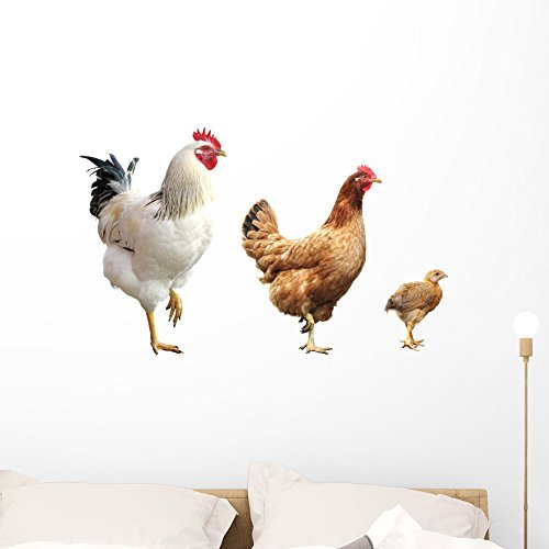Hen Sticker - Wallmonkeys Rooster Hen and Chicken Wall Decal Sticker Set Individual Peel and Stick Graphics on a (36 in W x 21 in H) Sticker Sheet WM349659
