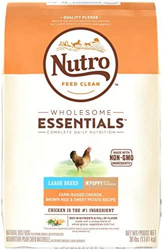 Dog Food: Nutro Wholesome Essentials Puppy Large Breed
