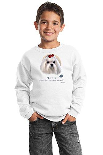 Maltese Youth Sweatshirt by Howard Robinson