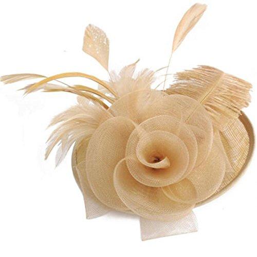 bilang Lady Feather Headwear Fascinator Hair Clip Wedding Bridal Birdcage Hat (Coffee) by bilang