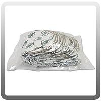 Sandia 10-0197-HEPA HEPA Backpack Vacuum HEPA Micro-Lined Filter Bag, 6 quart (Pack of 10)