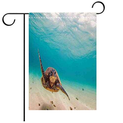 (Custom Personalized Garden flag Outdoor flag Hawaiian Underwater Scuba Diving Sea Turtle Nature Animal Swimming Wildlife Theme Blue Decorative Deck, patio, Porch, Balcony Backyard, Garden or Lawn)