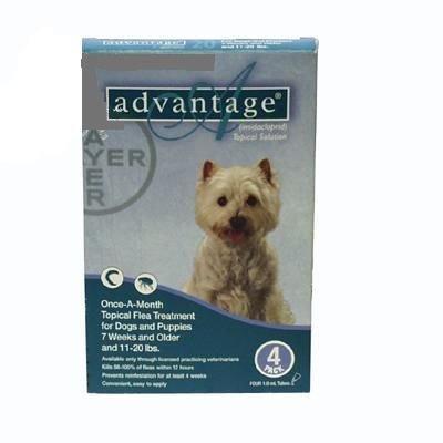Advantage 4 Pk. Dog Teal 11-21 Lbs., My Pet Supplies
