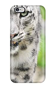 TYH - Slim New Design Hard Case For Iphone 6 Plus Case Cover - IcgepBF6743siCLk phone case