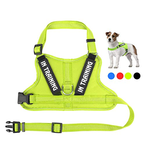 - Noyal in Training Dog Harness, Soft Breathable Mesh Dog Vest Harness - Adjustable 3M Reflective Outdoor Pet Vest with 2 Removable Patches for Small Medium & Large Dogs