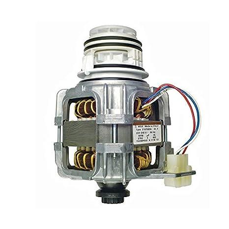 Bomba de circulación Bomba Motor utilizado en lavavajillas ...