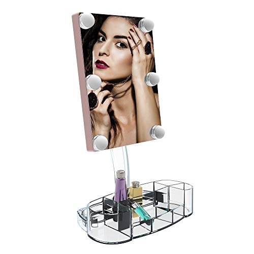 (Makeup Vanity Mirror with Lights, Plug in Hollywood Professional Mirror with 6 LED Lights, 180 Degree Rotation for Dimmable Natural Light,Detachable Countertop Cosmetic Mirror and Dual Power Supply)