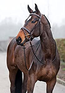 Horze Venice Soft Leather Padded Bridle