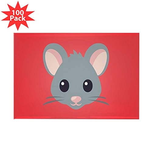 Mouse Rectangle Magnet - CafePress Mouse Rectangle Magnet (100 pack)