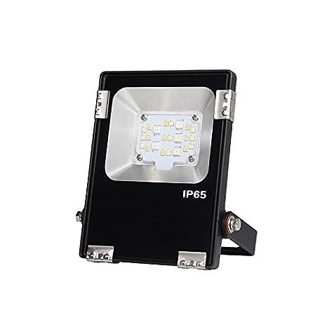 Foco Proyector LED RGB+CCT Nichia Led, 10W, RF, DC24V, Regulable ...