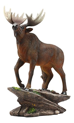 Ebros The Emperor Pride Realistic Bull Moose Standing On Rock Statue 13.5