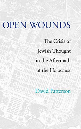 Open Wounds: The Crisis of Jewish Thought in the Aftermath of the Holocaust (Pastora Goldner Series)