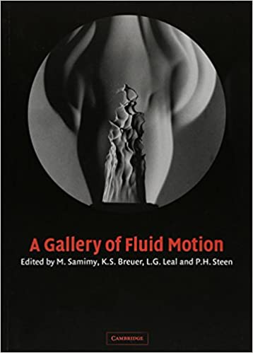 Book A Gallery of Fluid Motion