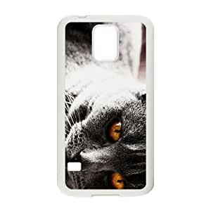 Cat Family Hight Quality Plastic Case for Samsung Galaxy S5