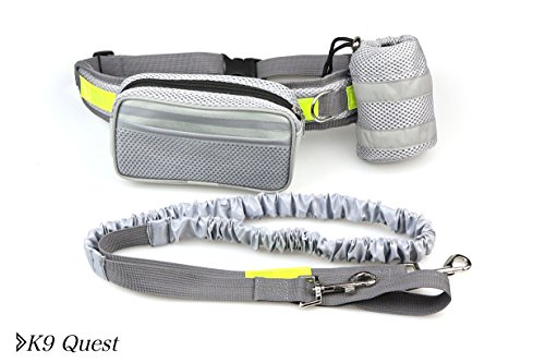 K9 Quest HANDS FREE DOG LEASH - Belt with heavy duty bungee - Large storage pouch - Adjustable waist - For running, hiking, walking, biking- detachable leash - Reflective - large dog or small (Gentle Leader Treats)
