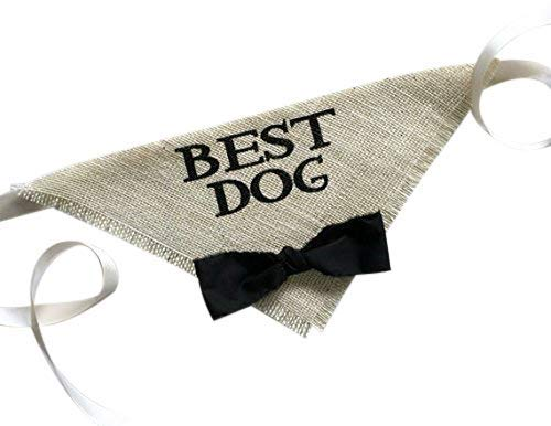Hello Hazel Company Best Dog Wedding Pet Bandana with Black Bowtie Size Medium/Large