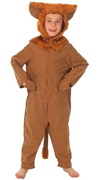 Boys Girls Fantastic Furry Fox Book Day Week Animal Fancy Dress Costume Outfit