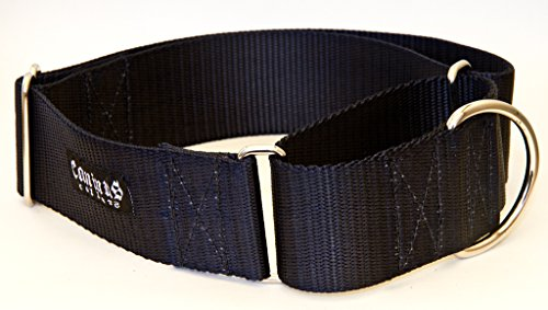 2 Inch Martingale Dog Collars - Heavy Duty Nylon (2'' width dog collars (Black, Large) by Caninus Collars