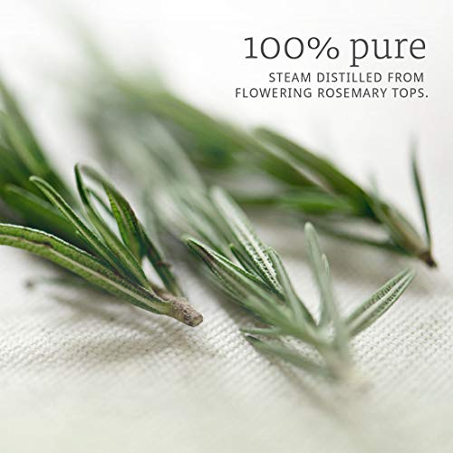Now Rosemary Essential Oil, 4 oz