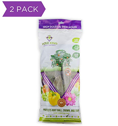 VOLE KING Plant Baskets, 5 Gallon, Pack of 2 - Protect Plants, Trees and Flowers from Voles, Gophers, Moles Without Repellent - Protect Landscaping from Mini Burrowing Animals - A One Time Solution