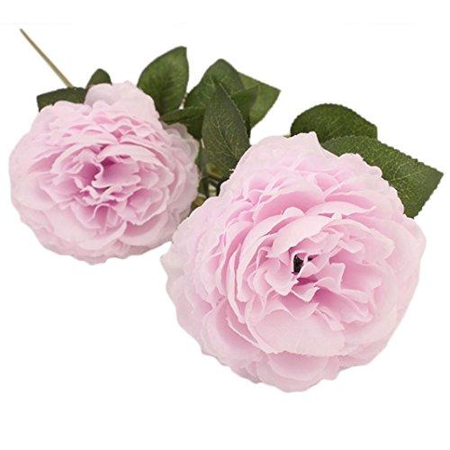 YJYDADA Flower,Peony Artificial Flower Latex Real Touch Bridal Wedding Bouquet Home Decor (F)