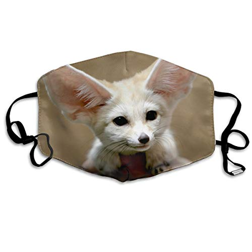Mouth Mask Fennec Fox Earloop Face Masks - Adjustable Elastic Strap for Ski Cycling, Anti Smog Dustproof Respirator, Half Face Mouth Mask/Cover -