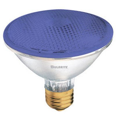 75W PAR30 Halogen Bulb in Blue [Set of 3] by Bulbrite