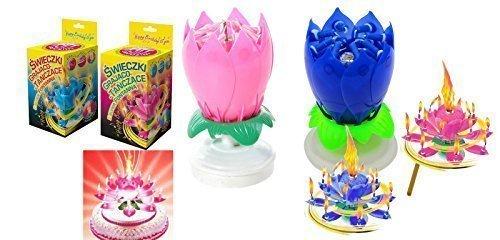 2 Musik Blumenkerzen rosa und blau Alles Gute zum Geburtstag mit Fontäne und Musik Kerzen Tortendeko Hochzeitsfontäne 14 Kerzen mit der bekannten Melodie
