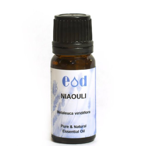 NIAOULI, ESSENTIAL OIL Melaleuca viridiflora 10ml by EOD - Essential Oils Direct